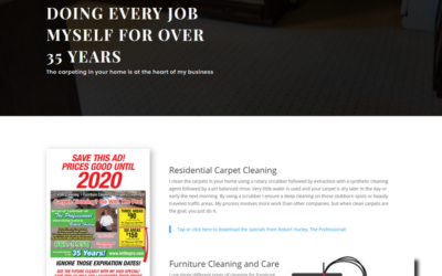 The Professional- Carpet Cleaning