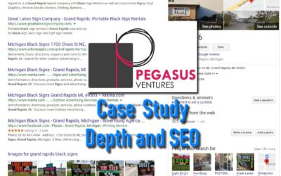 Case Study- Depth in SEO