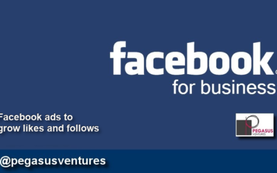 Facebook ads to grow likes and followers for a business page